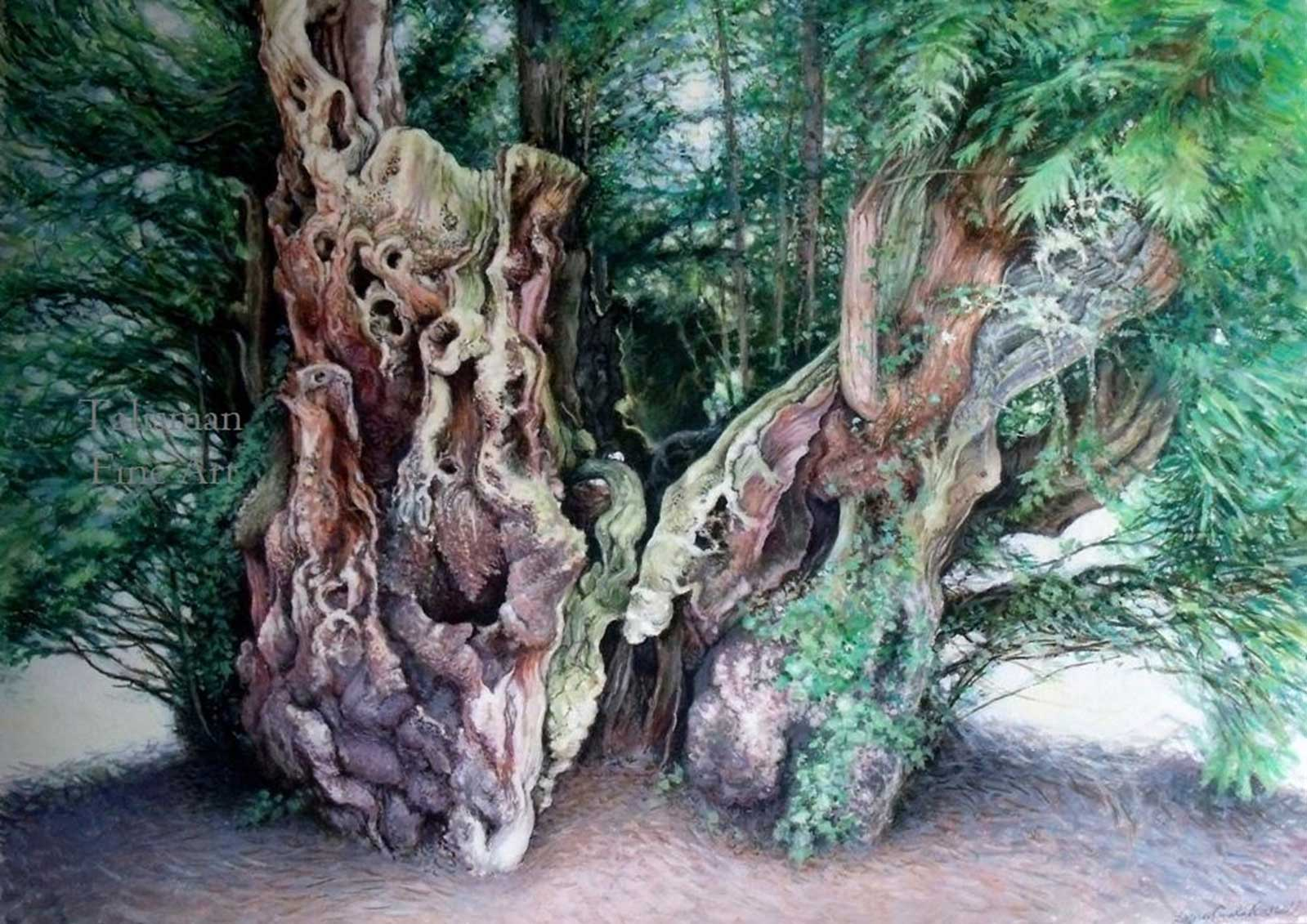 Talusman Fine Art Lynn Paula Russell - Ancient Yew (We have a large selection of her work)