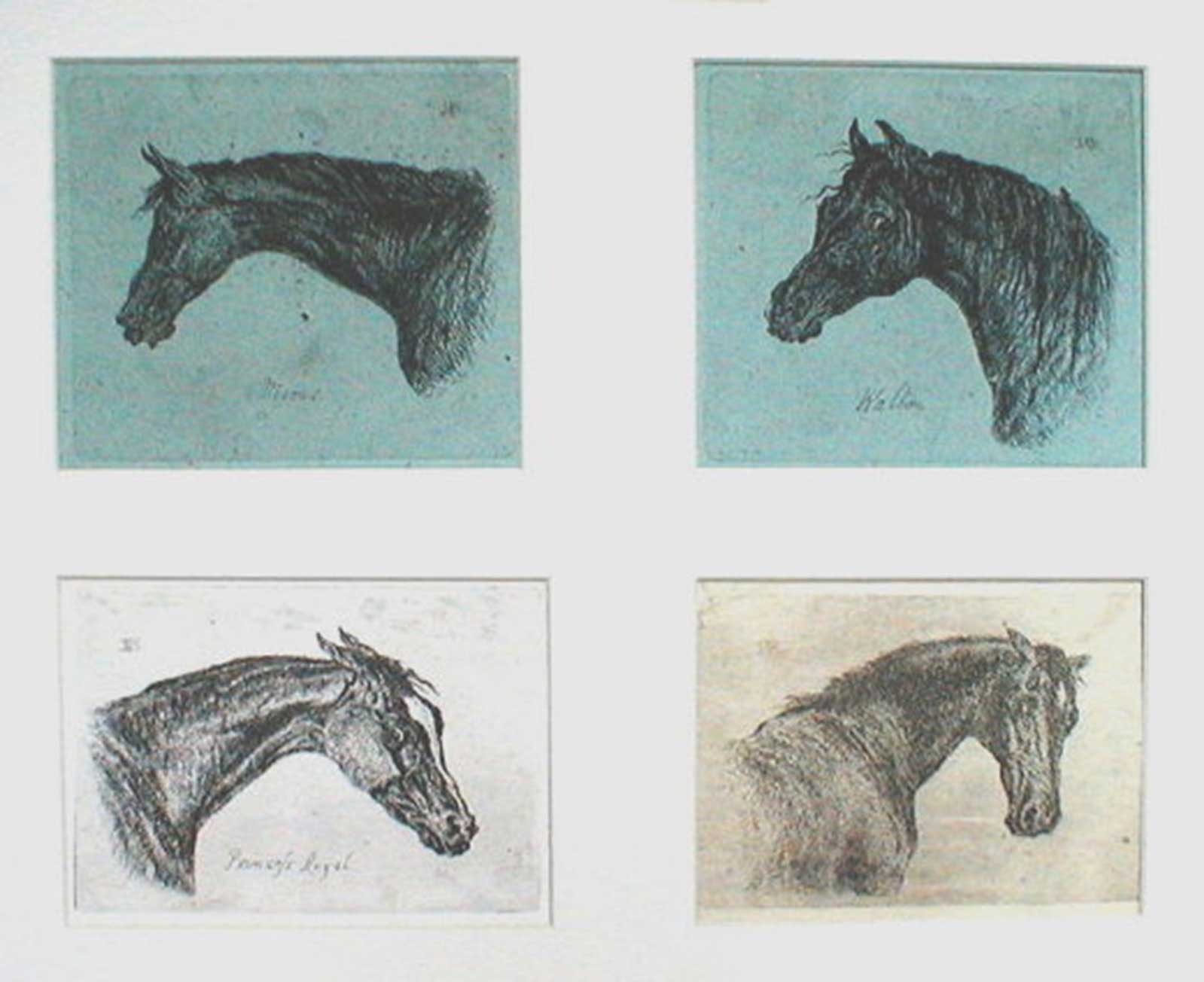 Talusman Fine Art John Norgrave Baker - Etchings of the Heads of  Four Horses