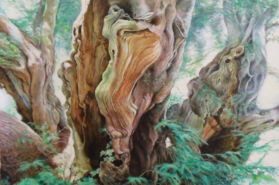 Lynn Paula Russell, Tree Faces  (NFS) - Talisman Fine Art